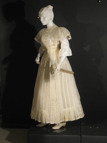 1890's Day Dress